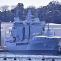 Photos: 米海軍横須賀基地にイギリス海軍補給艦タイドスプリングA136。。20170212