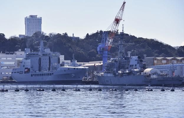 Photos: 横須賀基地 軍港めぐりから見るイギリス海軍補給艦タイドスプリングA136。。20170212