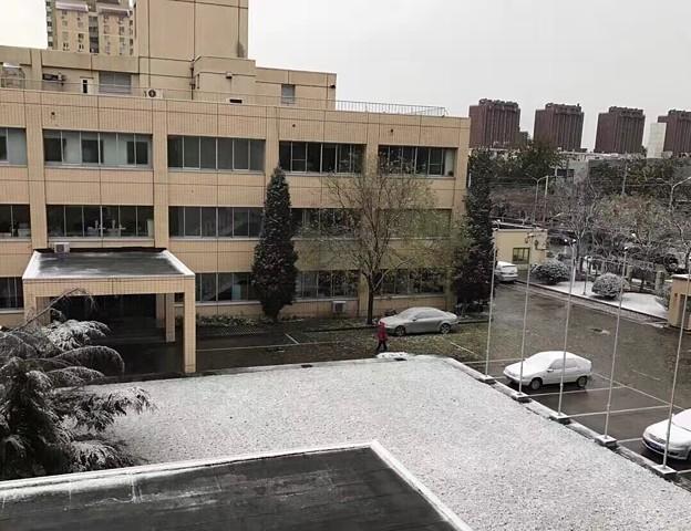 北京初雪だより (1)