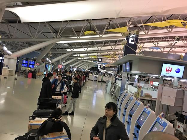 関西空港 エアアジアの混乱 (4)