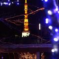 Photos: 東京ミッドタウン
