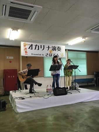 ToyohashiZosen11