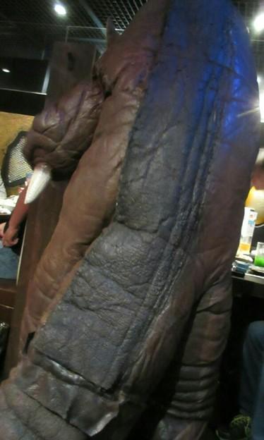 Photos: 怪獣酒場のゴモラさんのお背中が本当に愛しくて