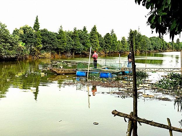 中山市の河川
