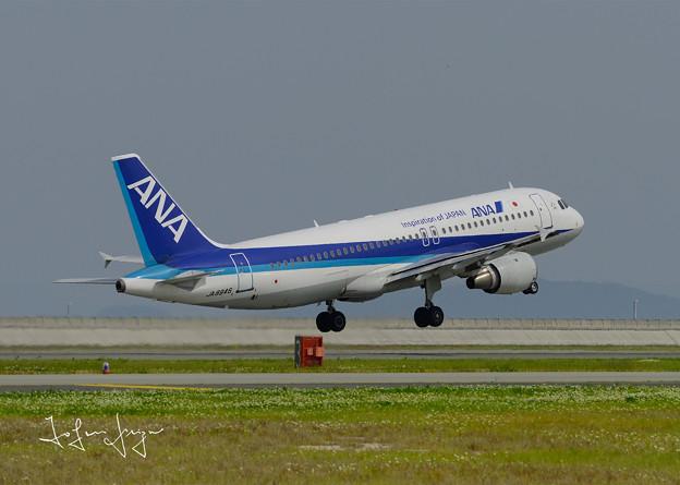 ANA機離陸