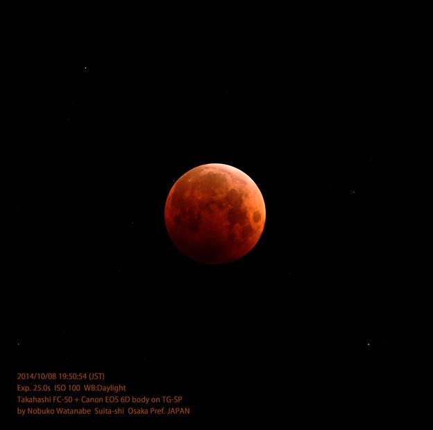 皆既中の月と星野