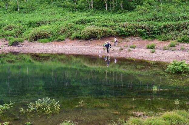 野反湖 ノゾリキスゲの咲くころ(15)