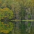 紅を待つ池
