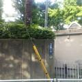 写真: 【5月7日は渋谷へ11】目の前の壁…