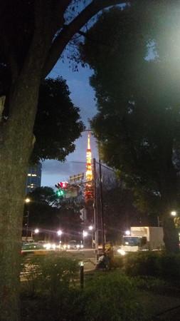 芝公園で撮った東京タワー(2016/12/15)
