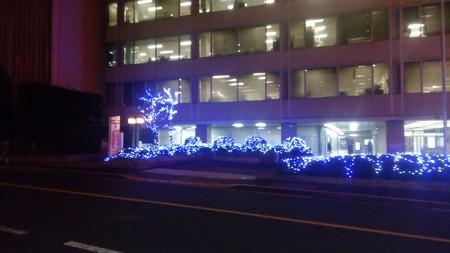 東京タワーにて9(2016/12/15)