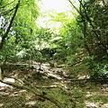 善助茶屋跡の下にある谷