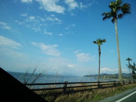 Spring blue sky