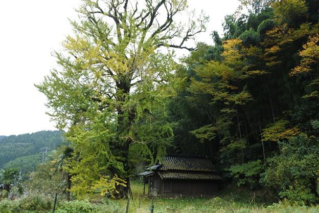 伊万里・大川内山12