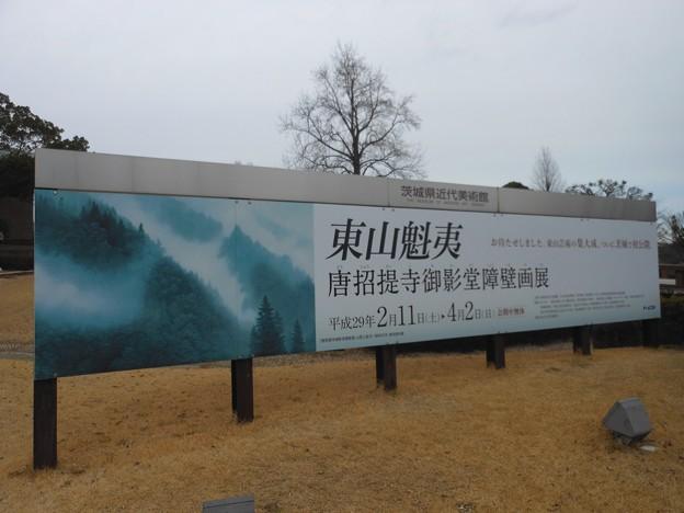 Photos: 茨城県近代美術館*東山魁夷・唐招提寺御影堂障壁画展2