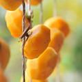 写真: 吊るし柿