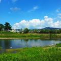 Photos: 京都 鴨川の風景