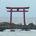 Photos: 名島の鳥居