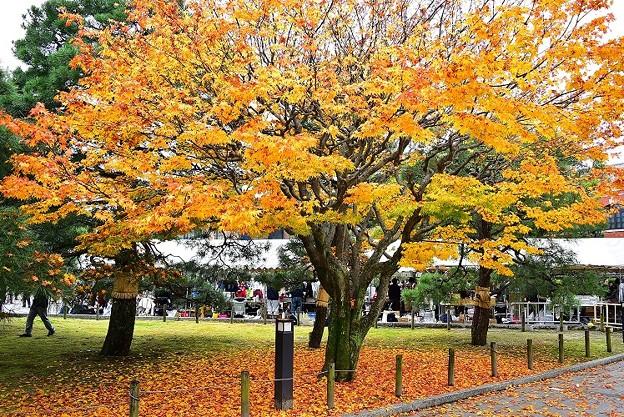 秋深まる京都