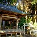 中川八幡宮社 拝殿と境内