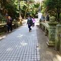 Photos: みそぎ橋
