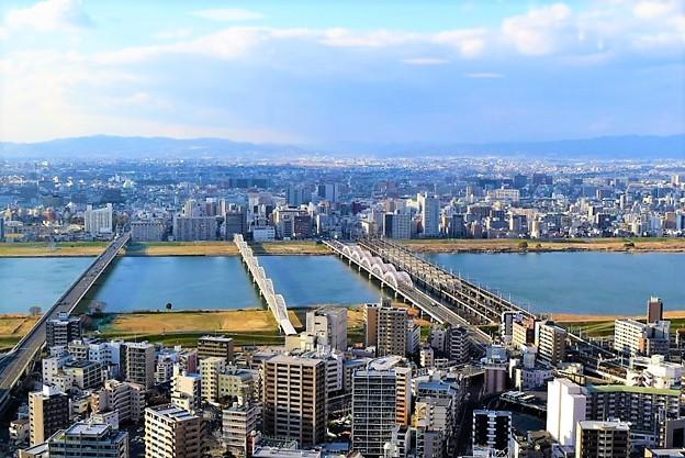 写真: 淀川