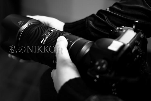 写真: 私のNIKKOR