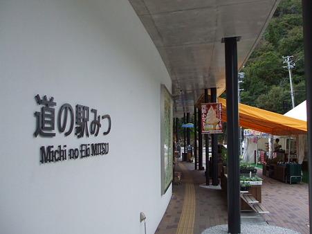 2010_10110094