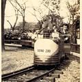 写真: おさるの電車