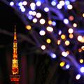 Like a candle ・・・ 2010 Christmas of Tokyo IIXVIII