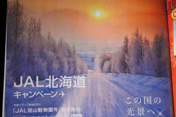 JAL機内誌で出会ったJAL北海道キャンペーンの広告の風景