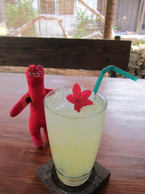 Photos: 冷たい飲み物