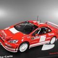 Photos: Peugeot 307 Rallye Monte-Carlo 2004