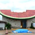 観光農園のトイレ