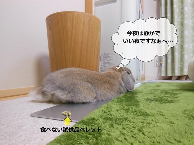 写真: あ1