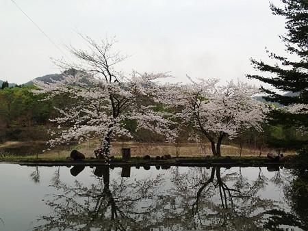28 GW 秋田 湯沢 山のゆっこ 8