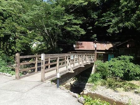 28 6 伊豆 大沢温泉 露天風呂山の家 1