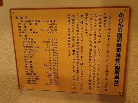 28 6 山梨 甲州鰍沢温泉 かじかの湯 5