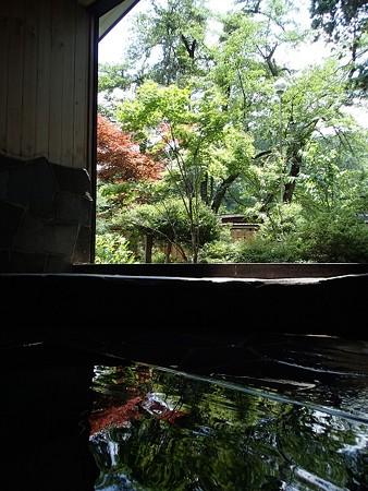 28 7 新潟 田中温泉 しなの荘 7
