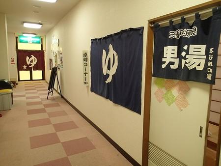 28 7 栃木 南平台温泉 観音湯 2