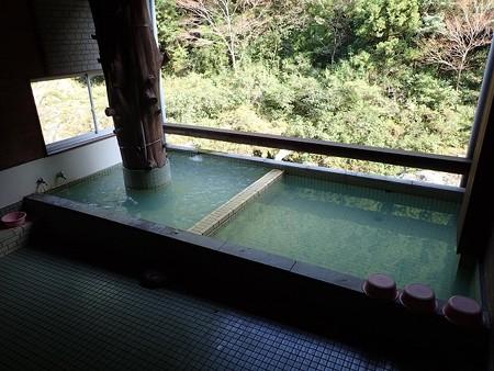 28 10 徳島 賢見温泉 7