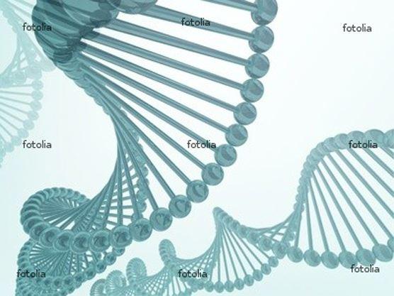 純天然綜合性酵素原液常見的問題 Enzymatic Therapy