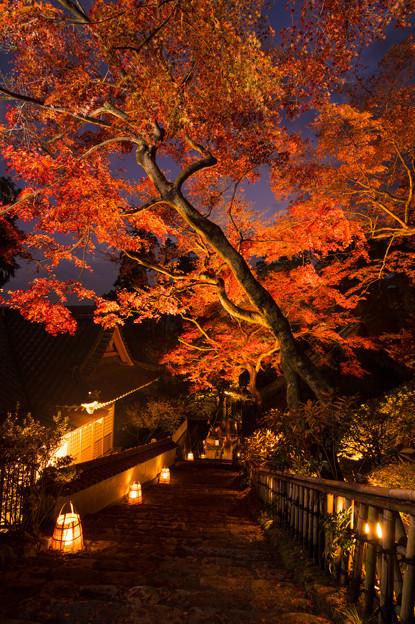 大興善寺の紅葉♪3
