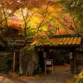 Photos: 秋月清流庵の紅葉♪