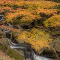 Photos: 篠栗五塔の滝周辺の紅葉♪