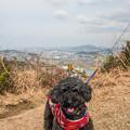 Photos: 近隣散歩♪