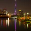 写真: 伊崎漁港からの夜景♪2