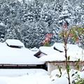 大原野雪景色