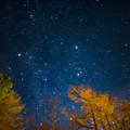 写真: 秋の夜空