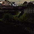 写真: 宝来橋のホタル 01(再加工)